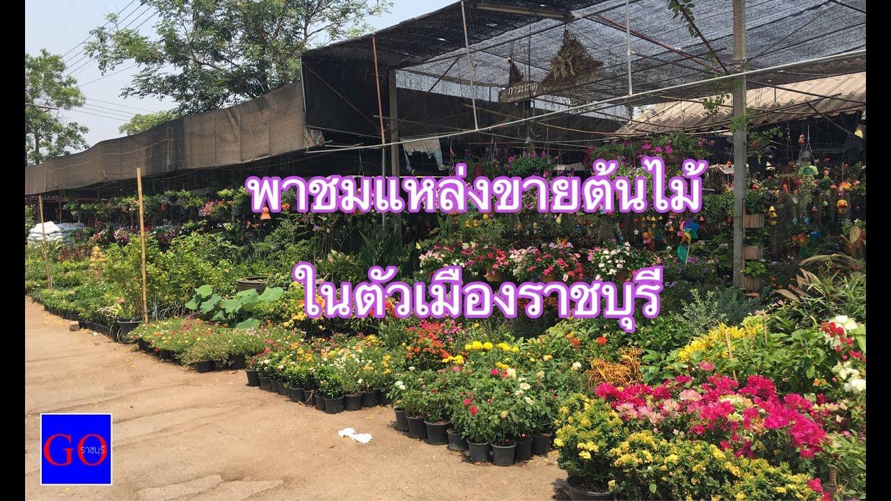 พาชมแหล่งขายต้นไม้ในตัวเมืองราชบุรี HD