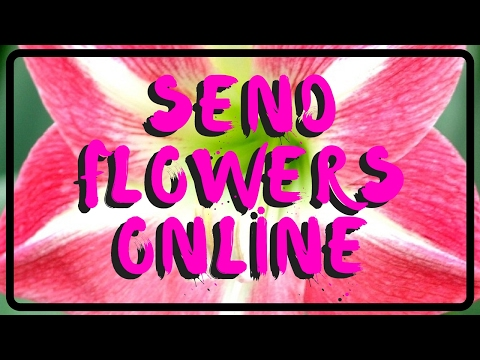 Florist Houston | Beautiful Flower Delivery in Texas