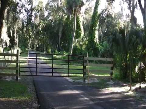 The Gate and Horse Fence
