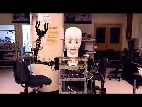 Expressive Multi-modal Interaction and Communication with a Mobile Humanoid Robot