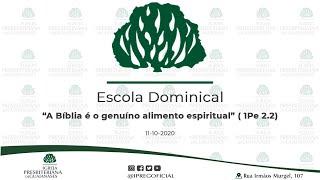 "Abertura Escola Dominical // Devocional: ""A Bíblia é o genuíno alimento espiritual"" ( 1Pe 2.2)"