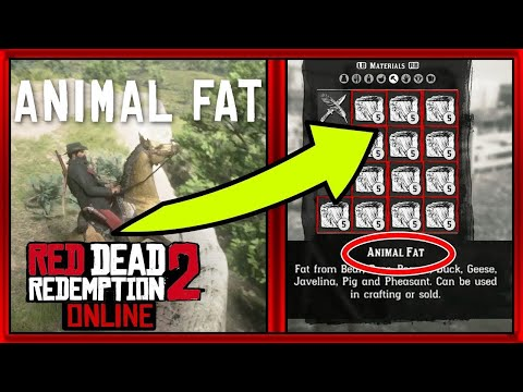 Get TONS Of Animal Fat (Red Dead Redemption 2 Tips and Tricks) (110 Explosive Ammo Fast)