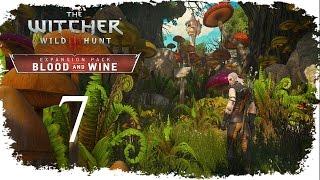The Witcher 3: Wild Hunt - Blood and Wine / Кровь и вино -  Доспех школы Мантикоры - #7