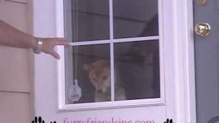 Pet Food Delivery In Colorado Springs Furry Friends Inc .wmv