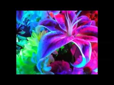 Как букет искусственных цветов