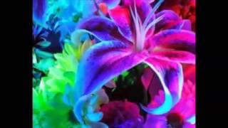 Как букет искусственных цветов -Маугли(, 2014-07-24T03:43:52.000Z)