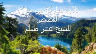 من سورة القصص للشيخ عنتر مسلم