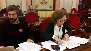 Pleno noviembre 2017 -  Alicia Morales sobre Pacto Violencia Género cortado