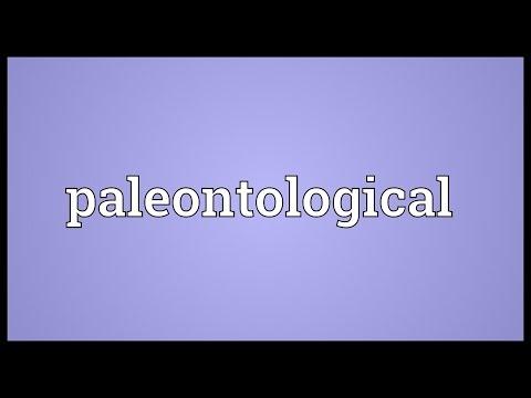 Paleontological Meaning