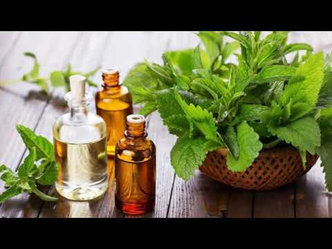 peppermint-oil-to-treat-pruritus-naturally---home-remedy-to-stop-itching-skin