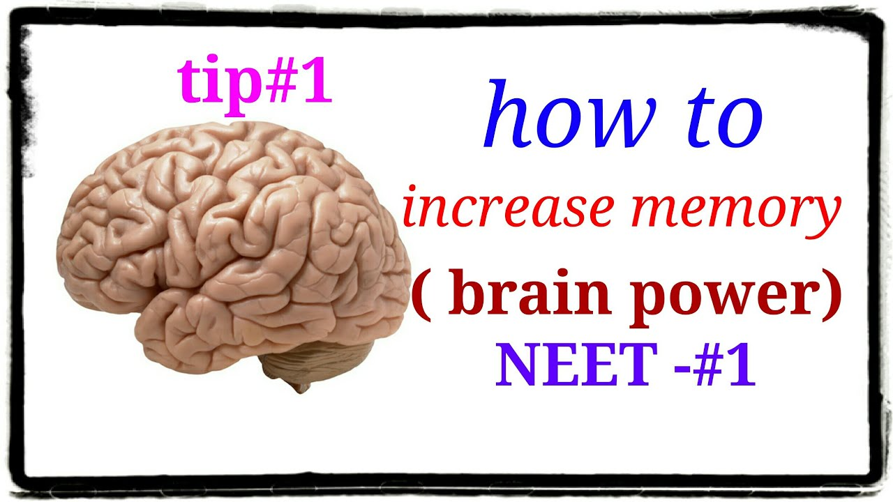 How to increase memory power of brain