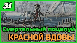 Fallout 4 Выживание  Смертельный поцелуй  31 ПРОХОЖДЕНИЕ в 1080 60