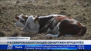 Выпуск новостей 20:00 от 18.07.2018