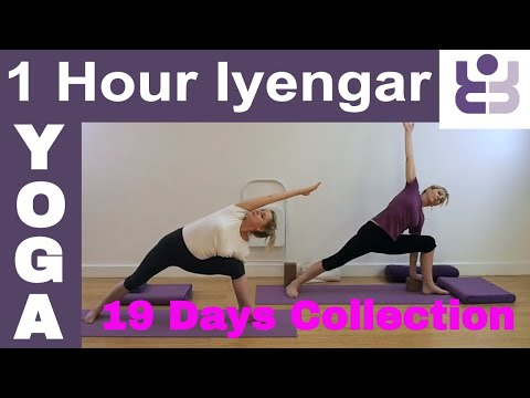 One Hour Iyengar Yoga Class - 19 Days of Yoga Collection