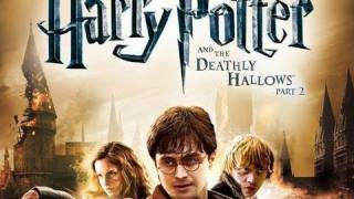 IGN Reviews - Harry Potter: Deathly Hallows Part 2 Game Review