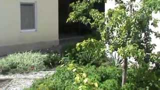 Двухкомнатная квартира на земле в старом городе Евпатории, территория(, 2013-11-07T08:22:06.000Z)