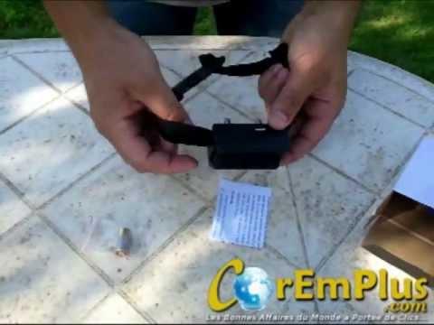 Collier Anti Aboiement Electrique Pour Chien Youtube