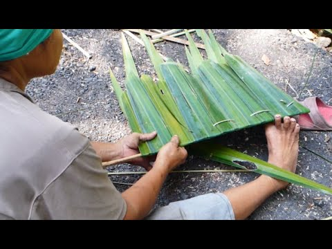 How To Make Attap Roof With Palm Fronds Thatched Roof