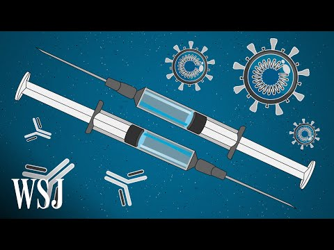 The Promise and Peril of Fast-Tracking the Coronavirus Vaccine | WSJ