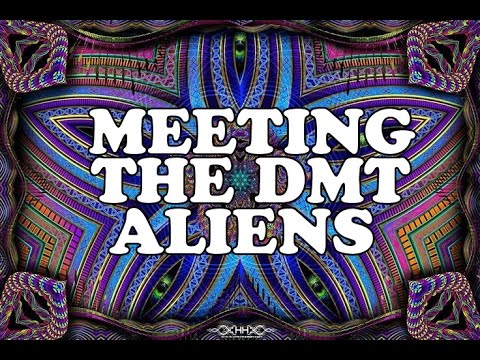 WHAT THE DMT ALIENS LOOK LIKE | My Experience (Cosmic Serpents, Psychedelic Entities, Machine Elves)