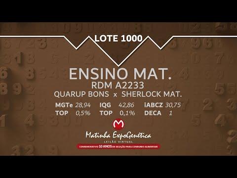 LOTE 1000 MATINHA EXPOGENÉTICA 2021