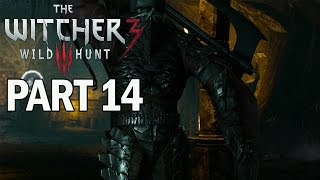 The Witcher 3: Wild Hunt Walkthrough Part 14 Golem Boss - PS4 Gameplay