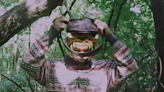 Гнойный-В лесополосе