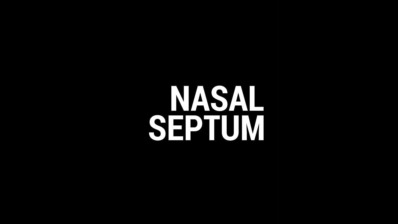 Nasal septum anatomy by Dhanwin - YouTube