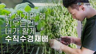 [농업 : 청년창업] 도시에서의 수직수경 채소 재배·유…