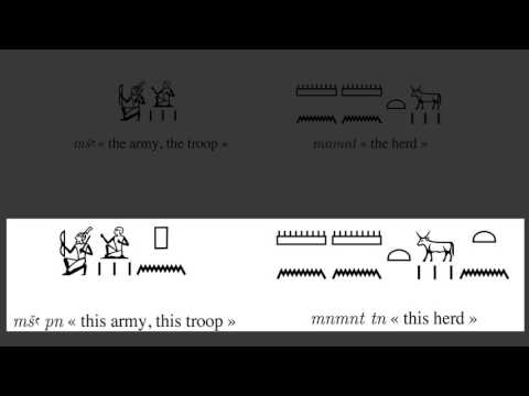 Ranykemet (Ancient Egyptian) Grammar: Collective Nouns