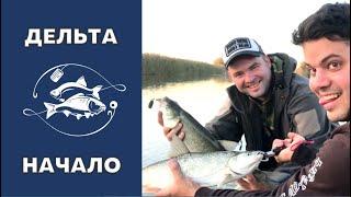 Рыбалка в дельте Волги осенью Часть первая Спиннинг Ловля жереха
