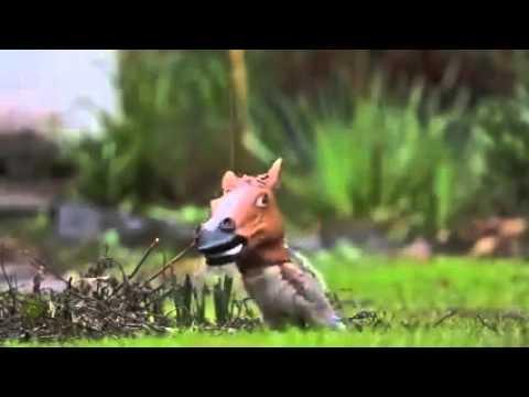 The Best Squirrel Feeder Is A Horse Head Squirrel Feeder Youtube