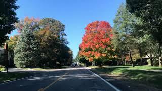 Autumn 🍁 Colors in Suburban Detroit areas 🇺🇸