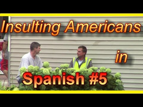 Insulting Americans In Spanish #5