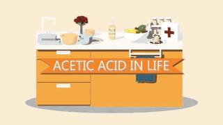 "Video Jieming Li: ""Acetic Acid and the Chemistry of Life"" download MP3, 3GP, MP4, WEBM, AVI, FLV Agustus 2018"