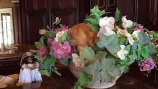 Funny Jack the Cat rearranges flower bowl for a nap
