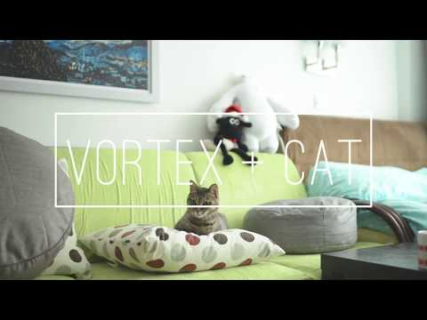 Vortex: A Day with Cat