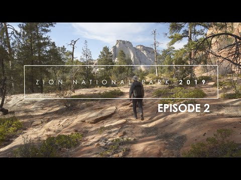 photographing-zion-fall-2019:-episode-2