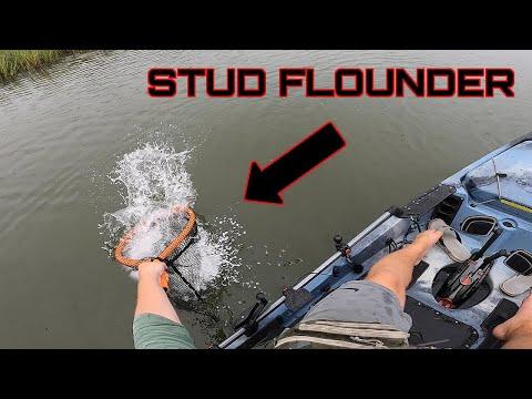 Marsh Fishing For STUD Flounder