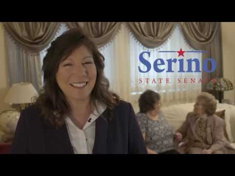 A campaign ad for state Sen. Sue Serino of Hyde Park who represents Putnam and Dutchess counties. Republican control of the state Senate is being hotly challenged on Election Day, Tuesday, Nov. 6.