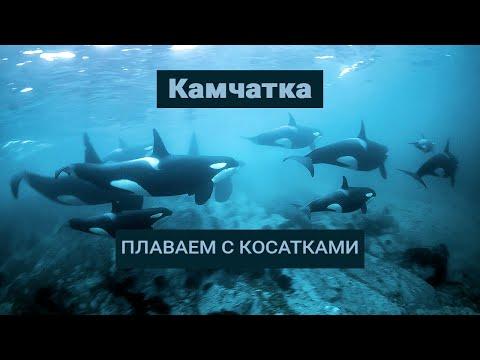 Kamchatka expedition 2017