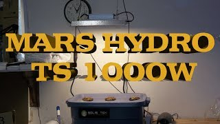Testing The Newest LED Grow Light By Mars Hydro - The TS 1000W White Spectrum - No Fans - Dimmable