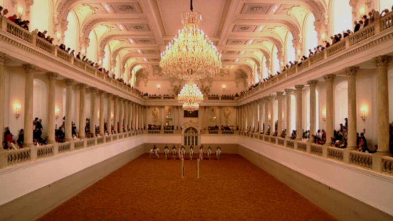 Spanish Riding School Of Vienna Is Coming To Brum Youtube