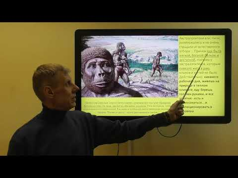 Сотворение, эволюция или инволюция? Что лучше? Александр Белов 4 января 2020