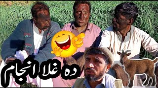 Pashto Funny Video By Charsadda Vines - Da Ghla Anjam