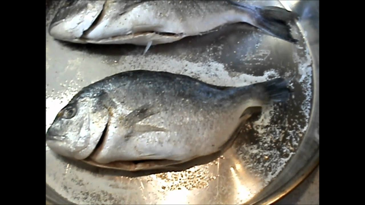 The greek cook fish in the oven youtube for Broil fish in oven