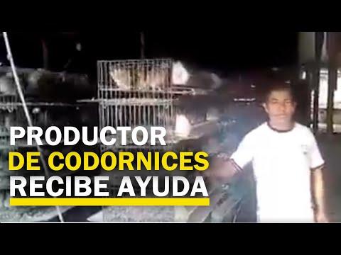 lurín:-productor-de-codorniz-recibe-ayuda-para-alimentar-a-sus-aves