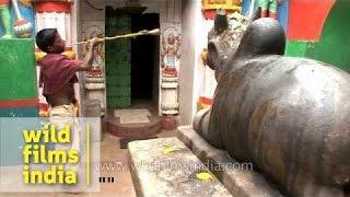 Hatakeswara Shiva temple, Odisha