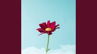 Provided to YouTube by TuneCore Japan ストップ!! ひばりくん! -オルゴール- · ORGEL BLOOM オルゴール アニソン Vol.1 「懐かしアニメ」 特集! ℗ 2016 ocha ...