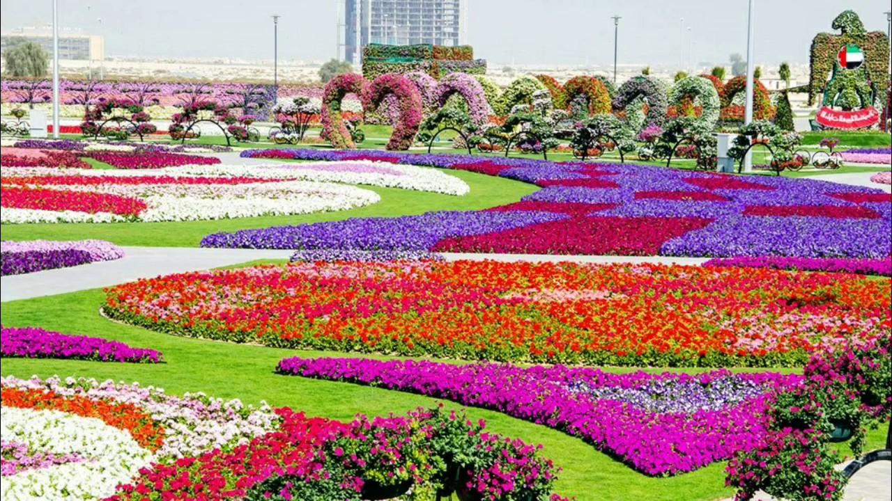 Great Beautiful Nature Flower Garden Wallpaper